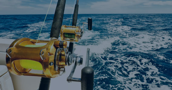 Offshor rigs, fish apparel, and offshore apparel at the tackle shop