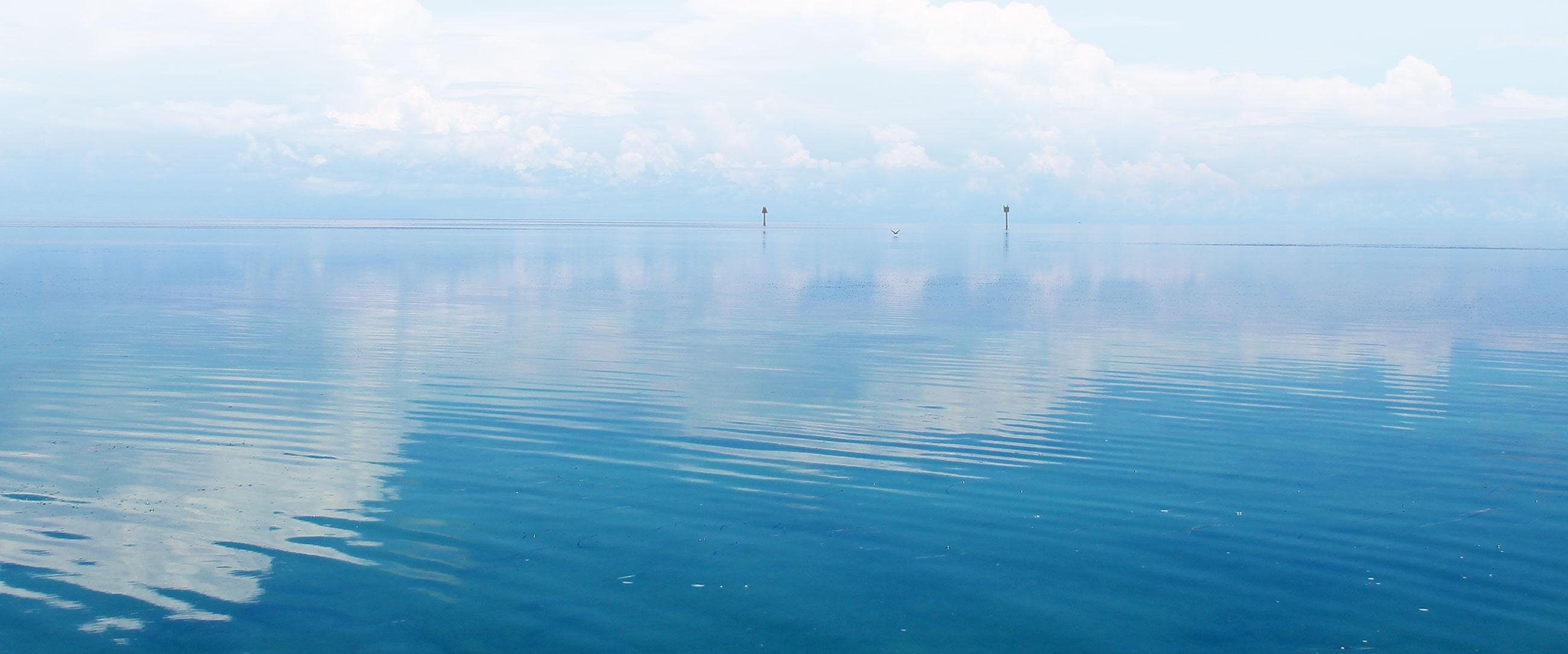 water-bg[2]